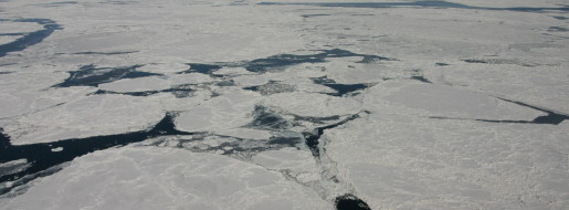 流氷観察フライト